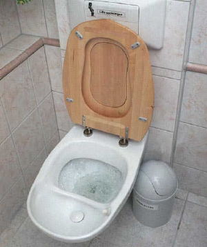 Urinseparerande toalett